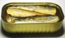 canned sarden and cardin fish