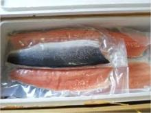 Frozen atlantic salmon fillets for sale