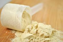 Wholesale  whey   protein , whey   protein  powder