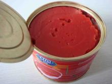 fresh tomato sauce paste importer