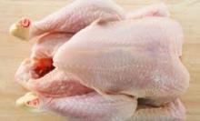 Grade A whole frozen chicken for export halal For sale