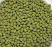 Green Mung Beans New Crop