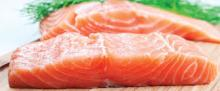Frozen Fish Meat Foods