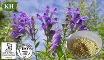 Baicalin,Scutellaria Baicalensis Extract