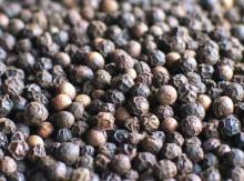 Black Pepper For Sale