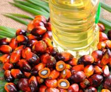 RBD Palm Olein / Cooking Oil / Refined Palm Oil / Cooking Oil High Quality