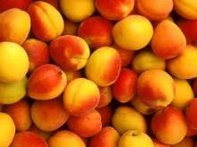 Fresh Peaches class 1