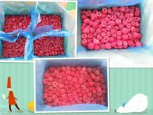 wholesale IQF raspberry