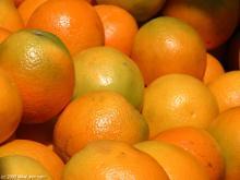 fresh mandarin orange citrus fruit