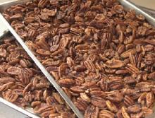 Georgia Pecans (Raw, No Shell),Hard Shell Pecans,Organic Pecans (Raw, No Shell),Roasted Pecans (Salt
