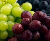 New High Quality Fresh Grape