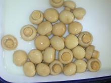Canned Mushroom,Champignon Mushroom,Canned Mushroom pieces & stems,Nameko,Straw