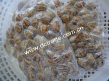 Frozen Boiled clam meat, whole, shell on
