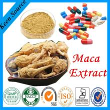 Sex Products Maca Extract Powder 5:1 and Raw material powder