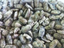 Frozen Oyster Meat without shell