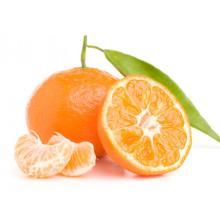 Morocco mandarin