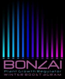 Bonzai Winter Boost 3g herbal incense