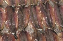 salted anchovies fillet
