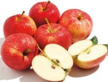 Fresh royal gala apples for sale