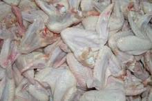 frozen chicken wings, feets, whole chicken, gizzards and other parts