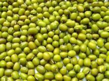 2014 new crop green mung bean