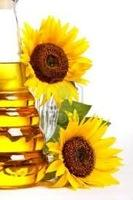 Quality sunflower oil from Cameroon