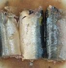 Canned Mackerel Fish in BrineCanned Mackerel Fish in Brine