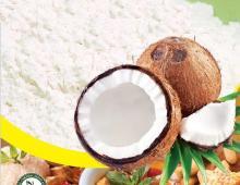 Instant coconut milk powder